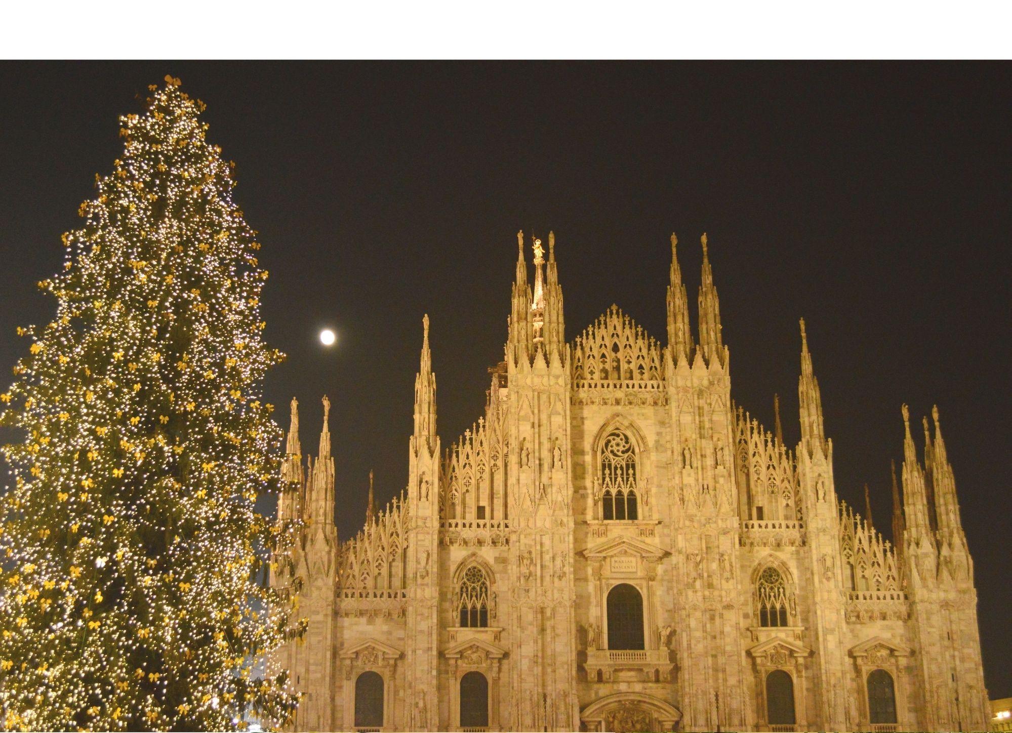 Interior Style Natalizio: Come arredare la casa con l'Albero di Natale perfetto! Erika Franzoni Interior Designer