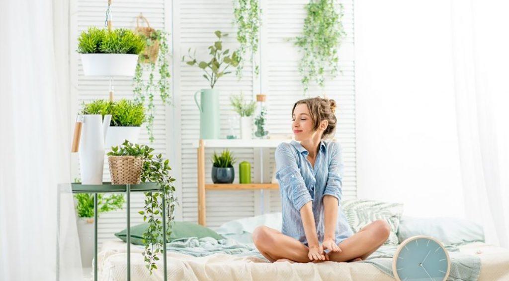 Verde Indoor: arredare con le piante.