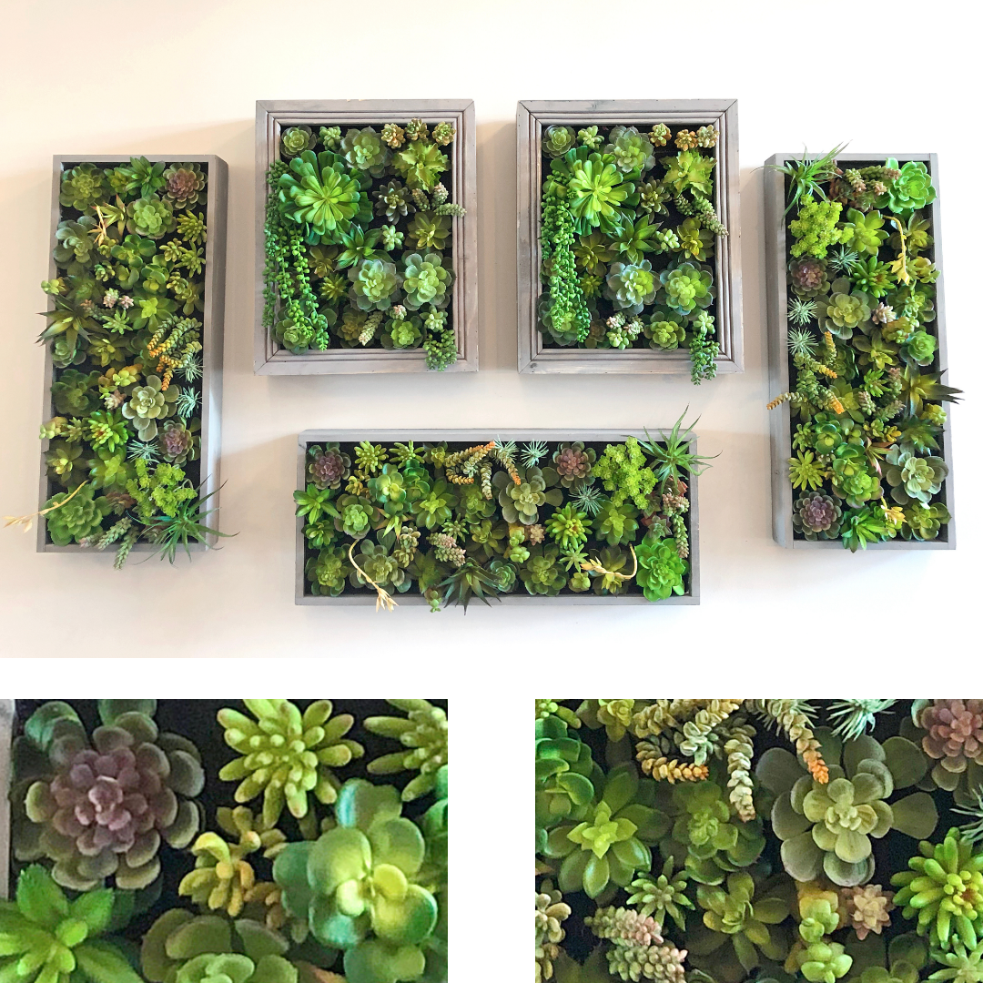 Come arredare e decorare le pareti con le piante Erika Franzoni Interior Designer Intuizioni d'arredo