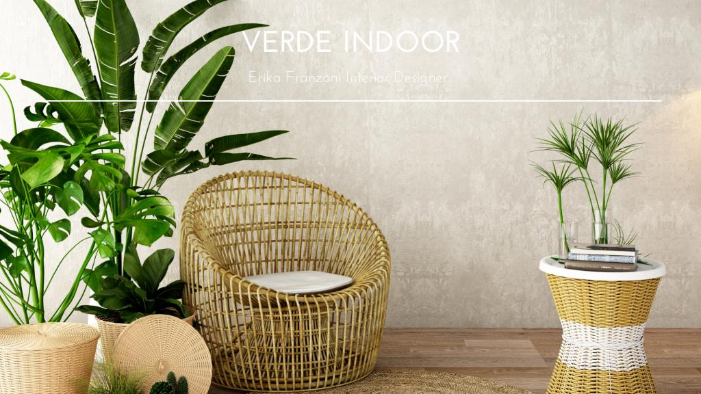 Verde Indoor: Come scegliere le piante per la tua casa